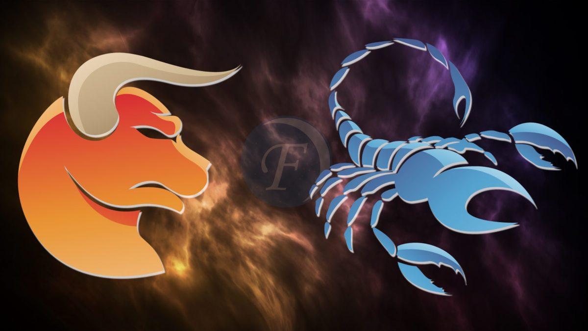 Совместимость Телец и Скорпион